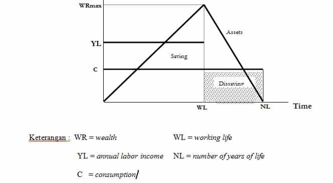 The Life-cycle - Permanent Income Theory of Consumption and Saving